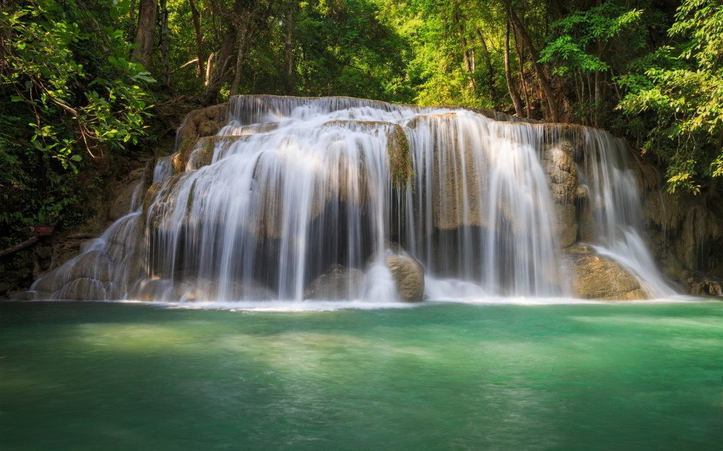forest-trees-waterfall