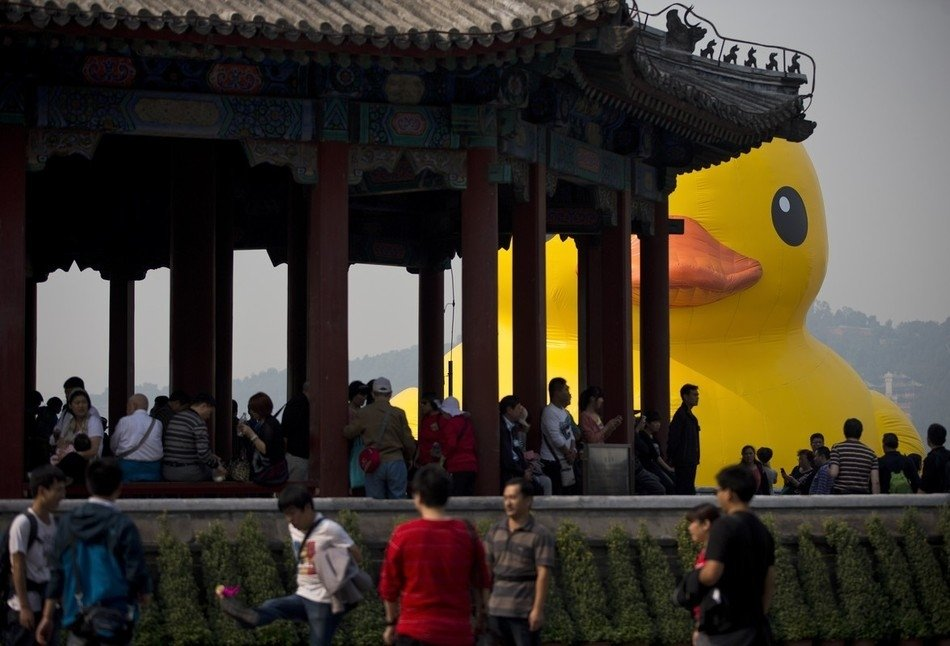 Duck in Beijing, China!