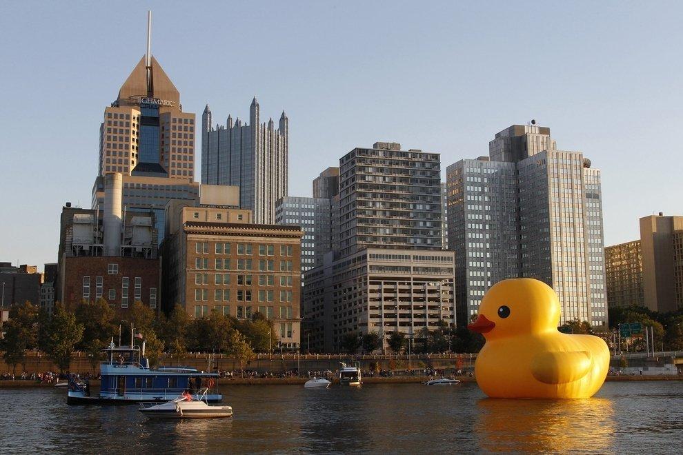 Ducky loves Pittsburgh's skyline