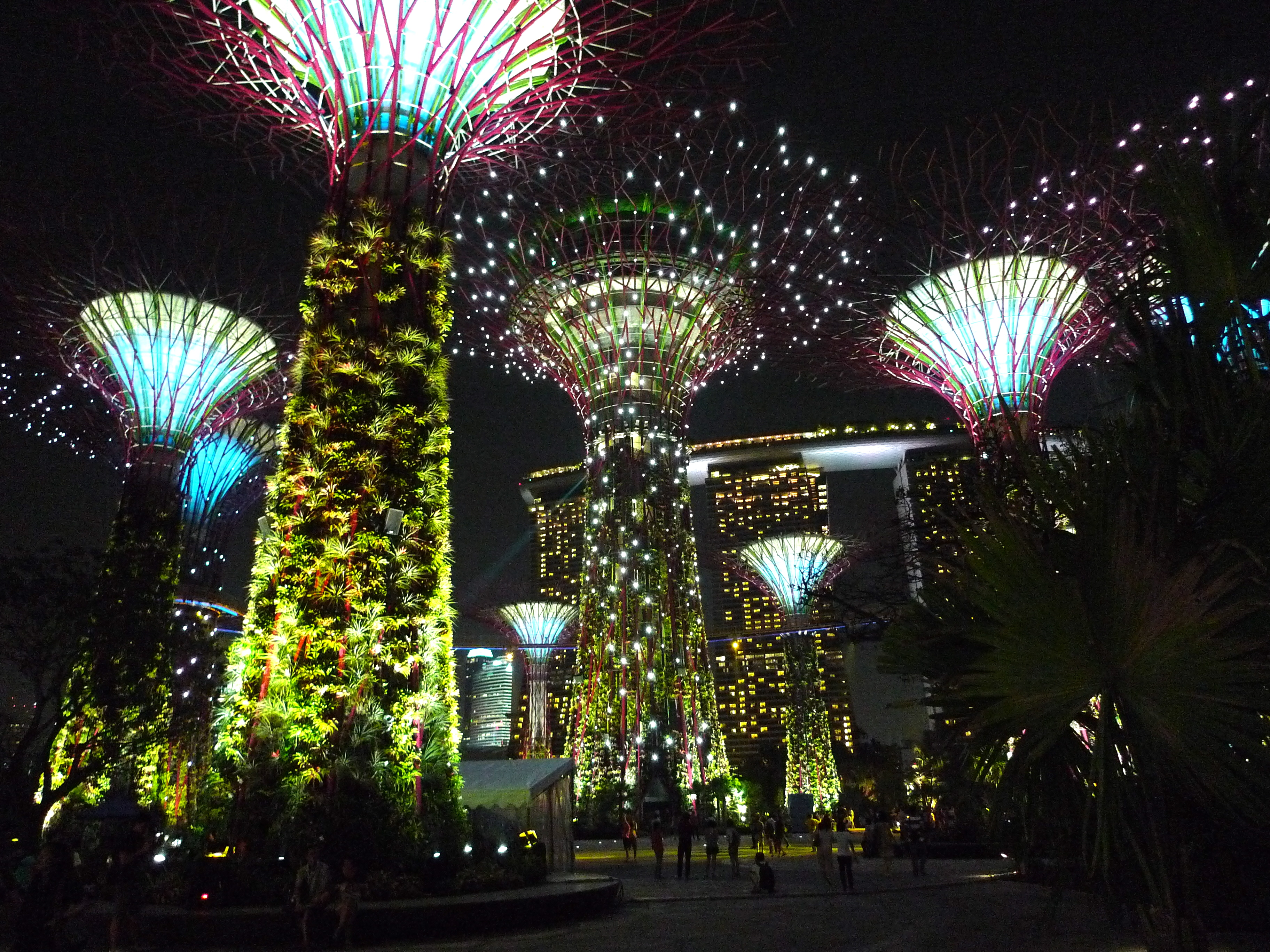 Supertree_Grove,_Gardens_by_the_Bay,_Singapore_-_20120630-04