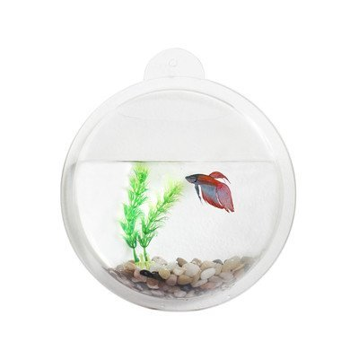 Danya-B-Acrylic-Wall-Mount-Fishbowl