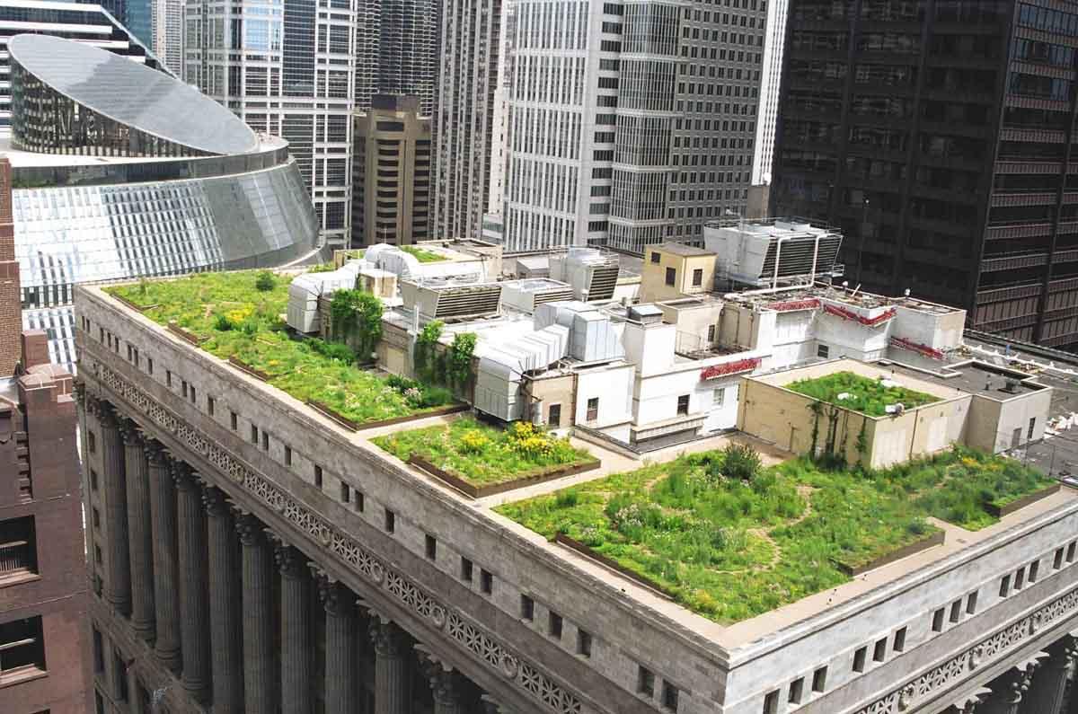 Rooftop-Garden-designs-in-various-types.