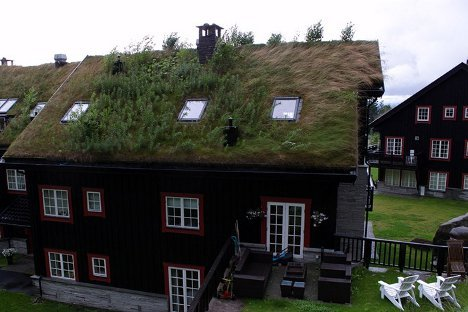 grass-sod-roofs