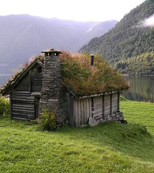 green-roof-design1a