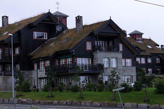 green-roof-norway (10)