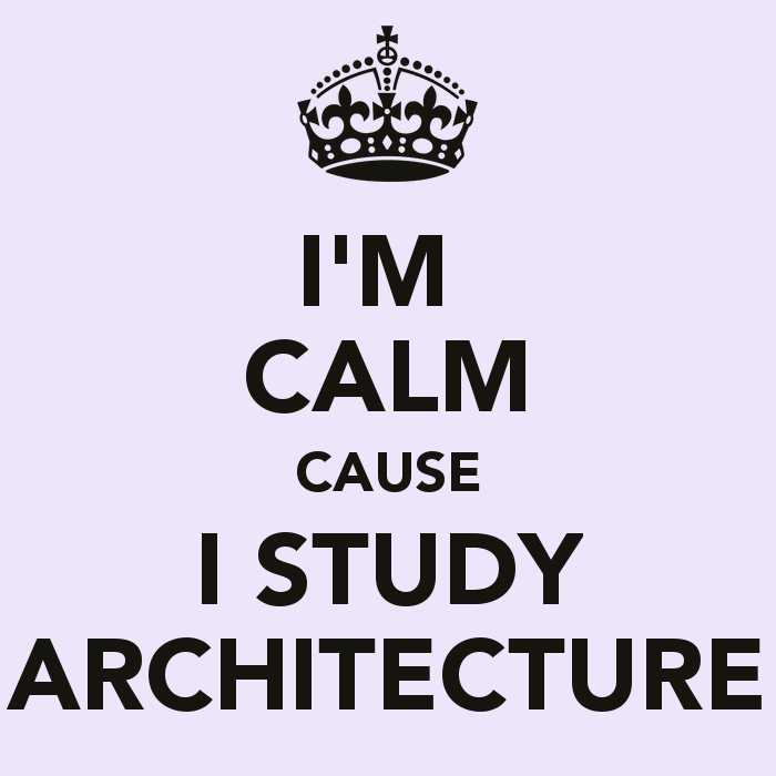 i-m-calm-cause-i-study-architecture-3