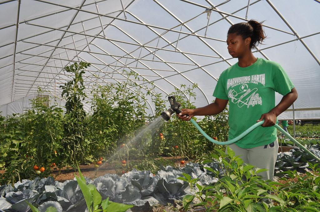 Mallory Horton Waters Plants in the GreenHouse at Harvesti…   Flickr