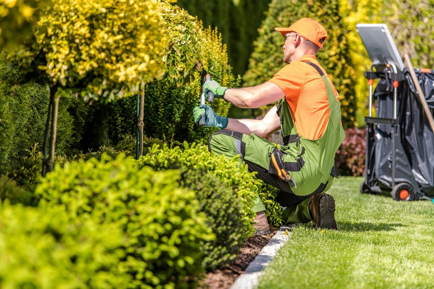 C:\Users\PC\Downloads\Landscaper-1-GettyImages-1166203849.jpg