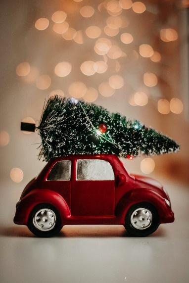 A small red car with a tree on top of it Description automatically generated with low confidence