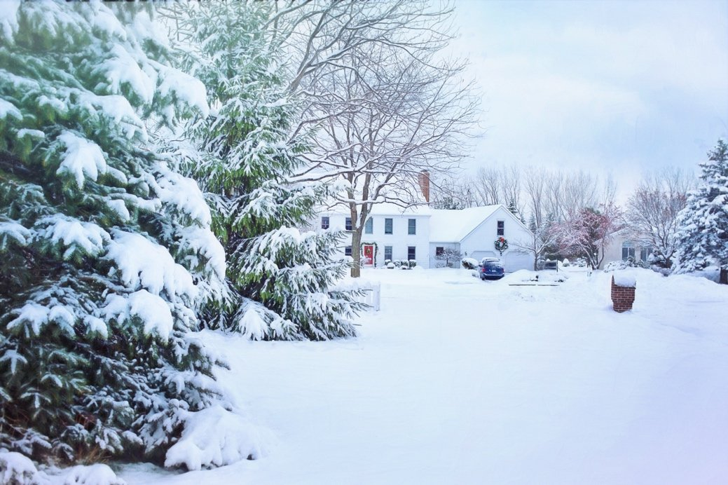 A snowy yard with trees and a house Description automatically generated with low confidence